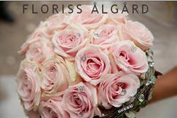 Floriss Algard